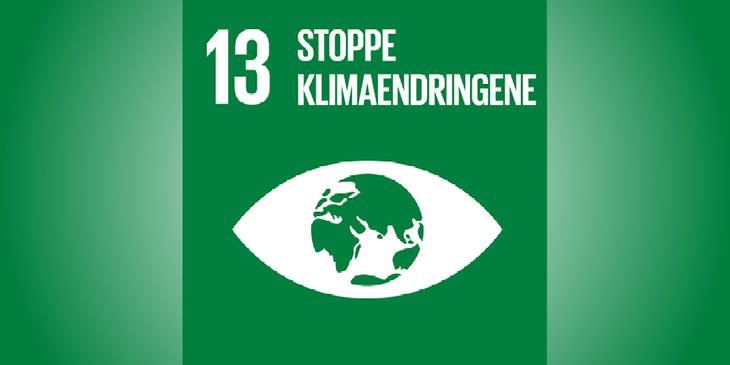 Verdensmål 13 på grøn baggrund