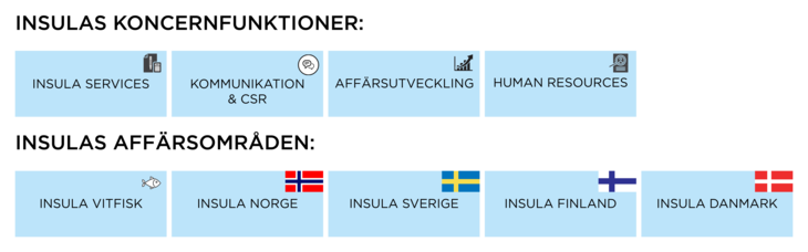 Figur: Insulas koncernfunktioner og affärsområder