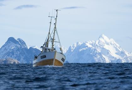 Fjell, hav, fiskebåt